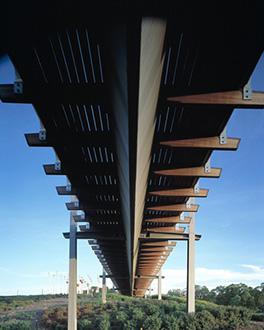 pedestrian bridge birrarung marr